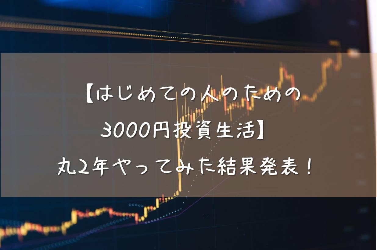 【はじめての人のための3000円投資生活】丸2年やってみた結果発表!